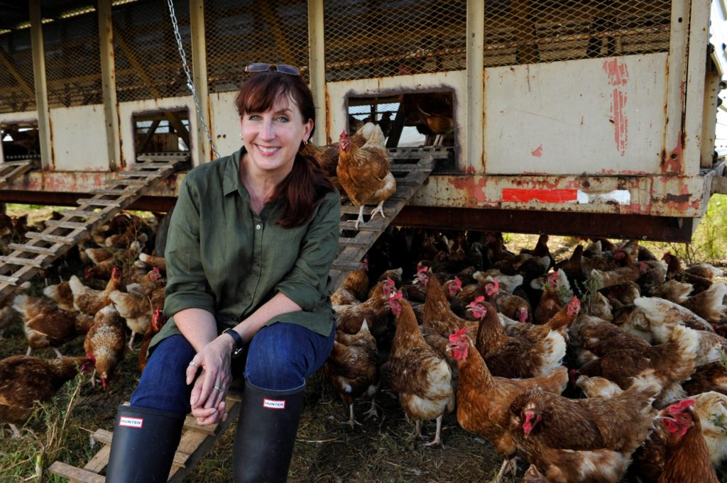 "Journalist Maryn McKenna visited a lot of chicken farms researching her book: ""Big Chicken."""