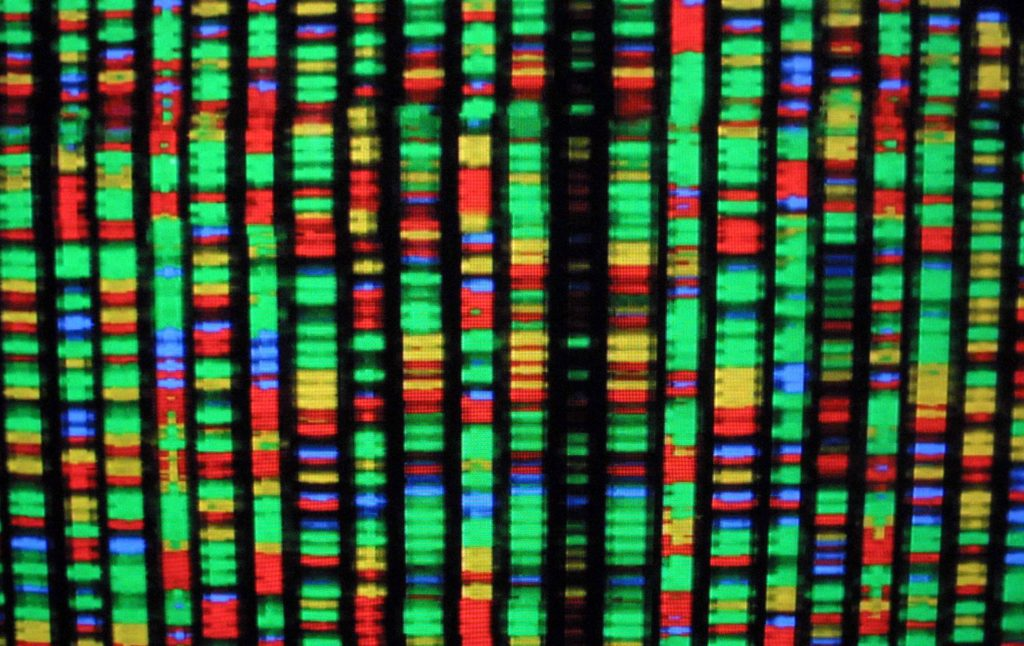 The human genome tells quite a story … one that can be read as a historical text.
